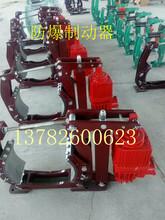 电力液压块式制动器防爆电力液压制动器YWZ5500/121煤矿专用制动器图片