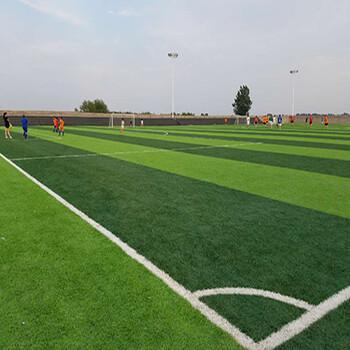 足球场人造草坪生产厂家施工