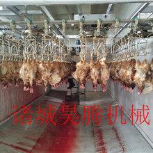 哪個牌子的整套雞宰殺流水線質量好圖片