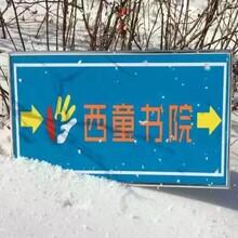 西童书院少年派东北滑雪冬令营火热招生!