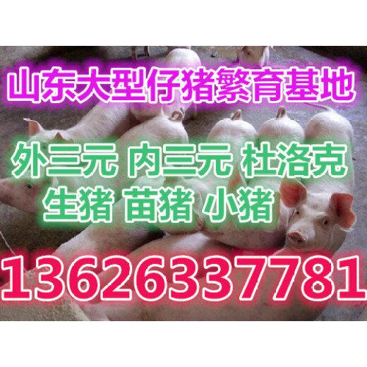 1480737904095681400-0