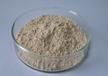 表没食子儿茶素没食子酸酯(EGCG)