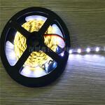 深圳市鑫长昊光电专业生产2835S型灯带2835软灯带发光字灯带1米60/72灯图片