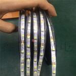 深圳厂家专业生产2835软灯带2835s型灯带发光字专用灯带图片