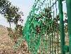 带绿色塑料皮的铁丝网-圈地围网-圈地护栏网--养殖护栏网-广亿护栏网厂