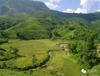 农业创业平台-中国农综网农业经纪人致富项目