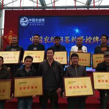 农村创业策划方案-中国农综网农业经纪人致富经图片