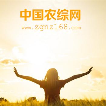中国农综网