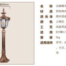 扬州弘旭供应欧式户外防水草坪灯小区别墅LED景观灯图片