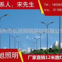扬州弘旭厂家直销12米路灯道路照明专用灯飞利浦