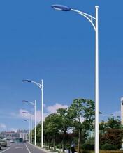 扬州弘旭照明专业生产15米800W道路灯户外灯