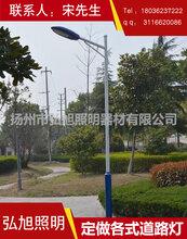 扬州弘旭照明生产10米道路灯中杆灯户外防水路灯图片