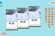 维生素单体价格单项维生素厂家VE报价
