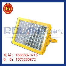 LED防爆灯60w/隔爆型LED防爆灯40w50w/体育场led防爆灯