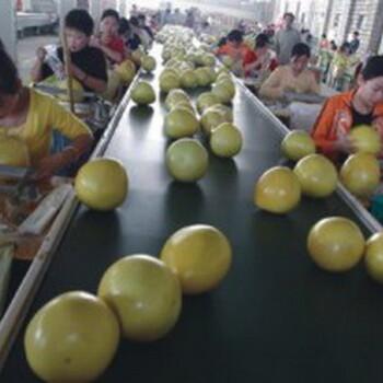 柚子批发一斤多少