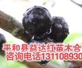 襄阳市嘉宝果树葡萄分类
