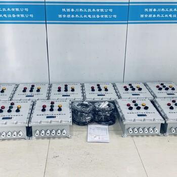 陜西秦川LYGR-10B-2F熄火保護裝置廠家/防爆型