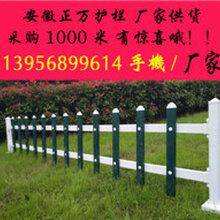 江苏南京PVC护栏材料江苏盐城PVC护栏江苏徐州PVC绿化栅栏