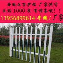 安徽安庆塑钢护厂铜陵PVC花坛围栏池州PVC变压器护栏