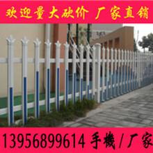 批发现货湖南长沙PVC护栏怀化PVC花池围栏娄底地区PVC花池栅栏