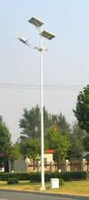 甘肃兰州热销专业生产太阳能照明路灯飞鸟厂家