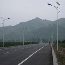 寒冬里的一盏暖灯——飞鸟LED太阳能路灯销往沧州