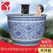 陶瓷魚缸中型大號特大青花客廳金魚缸睡蓮荷花缸風水擺件陶瓷