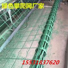 貴陽邊坡防護植物攀爬網邊坡防護園林綠化鋼絲網