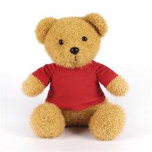 站姿穿毛衣泰迪熊公仔卡通大号女生抱抱熊公仔广东毛绒玩具定制