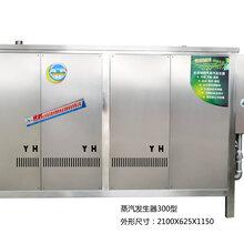 不锈钢304燃气电锅炉蒸汽炉发生器节能300型全自动蒸汽发生器