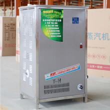 山东银鹤节能高效蒸汽机燃气锅炉小枣制品烘干专用锅炉