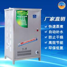 全部自动蒸汽发生器商用环保节能