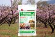 复合生物菌肥厂家直销价格优惠