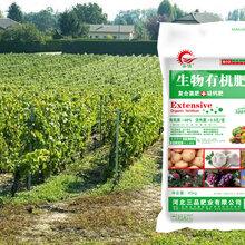 有机肥品类齐全全国供应