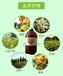 菌多旺水溶肥瓜果蔬菜专用肥生根壮苗预防死苗烂根