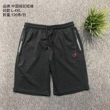中国骆驼户外休闲男装短裤五分裤男装批发图片