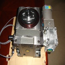 供应RU-110DF-08-270-2R-S3VW1X凸轮分割器运用于包装机械图片