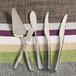 澳洲名品Cosmopolitan辛德瑞拉不锈钢西餐具刀叉勺