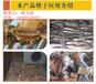 苏州高温热泵水产品烘干项目