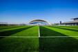 贵州专业制造足球场地贵州专业制造足球场地厂家博天供