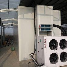 空气能农产品热泵烘干机食用菌脱水烘干机空气能烘干机厂家