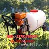农用喷雾器小麦三轮打药机
