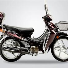 上海大阳摩托新车销售巨雷供大阳摩托新车厂家直接供货