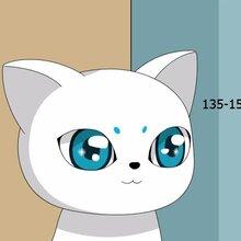 高端MG动画和二维动画定制首选玄猫动画