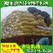 宜昌地区发酵好的鸡粪批发多少钱一吨?湖北宜昌鸡粪有机肥一垧地用量多少?