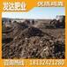 邯郸附近需要干鸡粪的农户多吗?临漳发酵鸡粪一亩地用几斤?