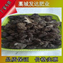 贵州铜仁枇杷底肥选哪种鸡粪好?德江地区干鸡粪怎么批发?