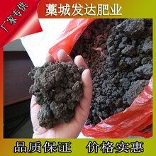 黑龙江佳木斯周边批发鸡粪的怎么联系?优质膨化颗粒鸡粪多少钱一袋?