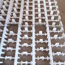洗碗机网带生产厂家节距76.2100塑料尼龙耐高温洗碗机网带