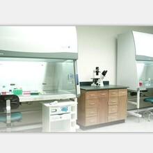 厂家供应香港澳门实验台,实验室家具,实验室设备图片